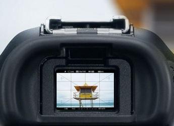 El visor de la cámara