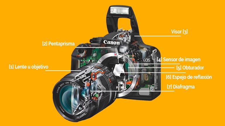 partes internas de una cámara fotográfica réflex digital